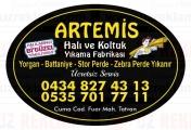 Artemis Halı ve Koltuk Yıkama Fabrikası